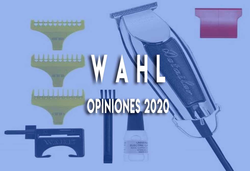 wahl-2020-opiniones